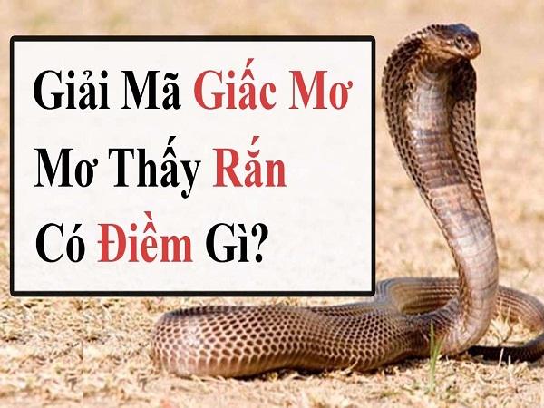 ngủ mơ thấy con rắn là điềm báo gì ?