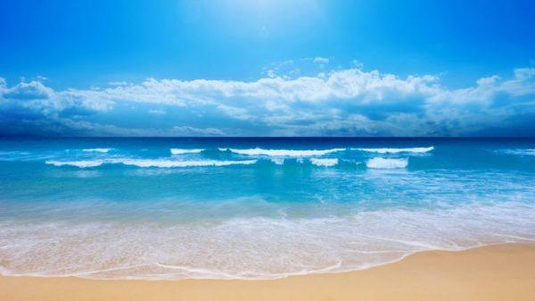 Nằm mơ thấy biển nên đánh con gì?
