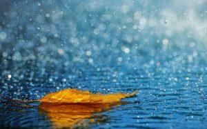 Nằm mơ thấy mưa nên đánh lô đề con gì?