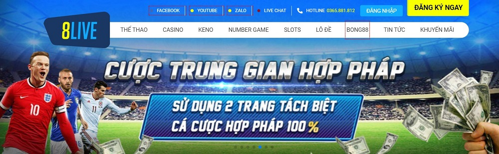 8live banner